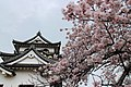 Hikone Castle Keep Tower 20170409.jpg