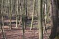 Hildener Heide 2016 161.jpg