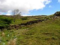 Hillside to the east side of the N71 - geograph.org.uk - 16058.jpg