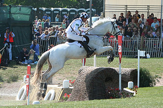 Holsteiner - Seen here at Badminton in 2007, the Holsteiner Marius and his rider Hinrich Romeike went on to win the gold medal in eventing at the 2008 Beijing Olympics.