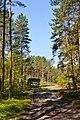 Hishyn Kovelskyi Volynska-Pryrichnyi nature reserve-view near the power line-2.jpg