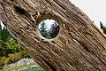 Hole in wood.jpg
