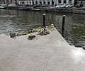 Homomonument, Amsterdam (1).jpg