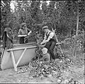 Hopping in Kent- Hop-picking in Yalding, Kent, England, UK, 1944 D22167.jpg