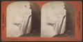 Horseshoe Fall, Niagara, sunset, by Barker, George, 1844-1894.png