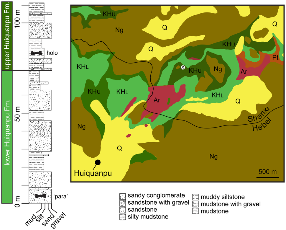 Huabeisaurus stratigraphy map
