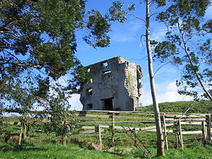 Newcastle, County Wicklow - Ruin of Fortified House