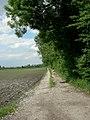 Im Erdinger Moos bei Niederneuching - geo.hlipp.de - 25436.jpg