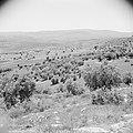In het landschap van Gilead, Bestanddeelnr 255-5689.jpg