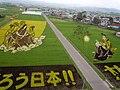 Inakadate Tanbo Art (田舎館の田んぼアート) - panoramio (1).jpg