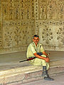 India-0099 - Flickr - archer10 (Dennis).jpg