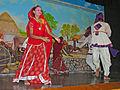 India-5823 - Flickr - archer10 (Dennis).jpg
