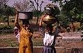 India (64885644).jpg