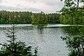 Informal meeting of environment ministers. Field trip Estonian nature, Kõnnu Suursoo bog (35090079013).jpg