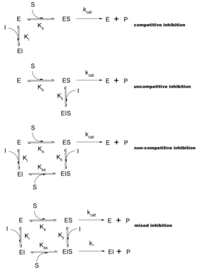 Types of inhibition. This classification was introduced by W.W. Cleland.