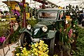 Internationale Orchideen- und Tillandsienschau Blumengärten Hirschstetten 2016 Tatra.jpg