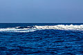 Isole Eolie (34).jpg