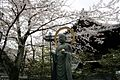 Japanese statue.jpg