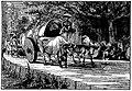 Javanese traditional cow cart, 1866.jpg