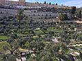 Jerusalem (31751300310).jpg