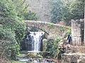 Jesmond Dene Mill 1163.JPG