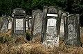Jewish cemetery Lodz IMGP6632.jpg