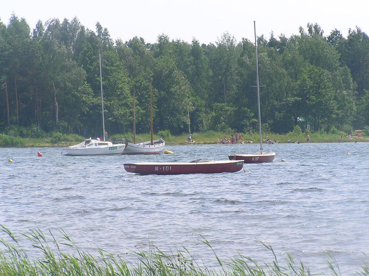 Piaseczno (jezioro w województwie lubelskim) – Wikipedia, wolna ...