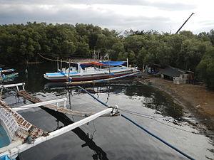 Isla Pulo - The mangrove island in Tanza, Navotas