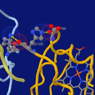 Jmol - Image: Jmol screenshot hemoglobin