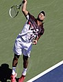 Jo Wilfred Tsonga - Flickr - chascow.jpg