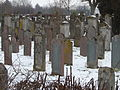 Juedischer Friedhof Freistett 04 fcm.jpg