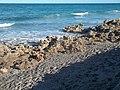Jupiter FL Coral Cove Park beach03.jpg