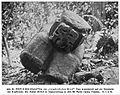 K.v.d.Steinen, Marquesaner Bd2 p81 Abb61, Hiva Oa, Puamau - Makii-Taua-Pepe, rear view.jpg