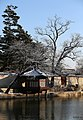 KOCIS Korea Snowfall in Gyeongbokgung 21 (11318863746).jpg