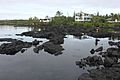 Kapoho Beach Tide Pools.jpg