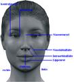 Kea0013 female avatar description 01.PNG
