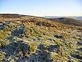 Kirkhope Hill - geograph.org.uk - 298233.jpg