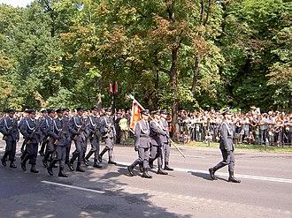 Representative Honor Guard Battalion of the Polish Armed Forces - Image: Kompania Reprezentacyjna Sił Powietrznych