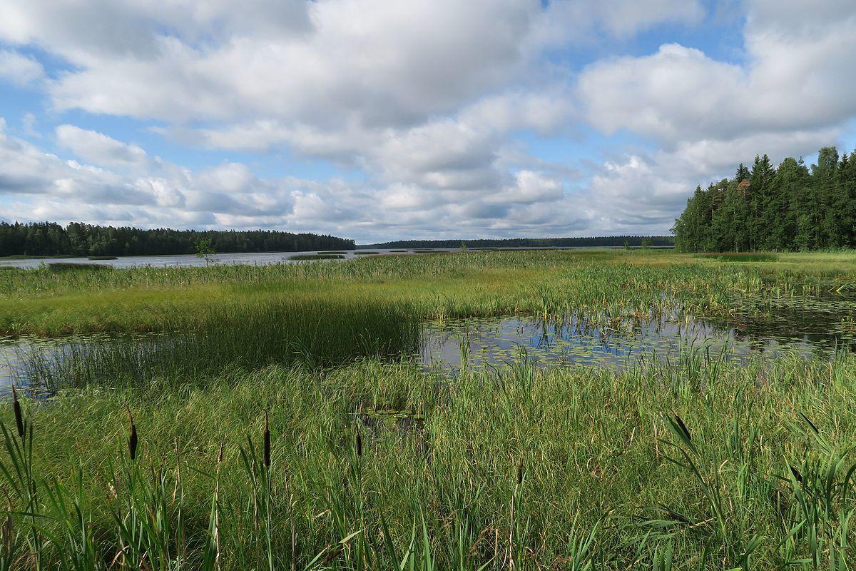 Rehevä Järvi
