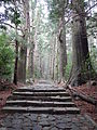 Kumano Kodo pilgrimage route Daimon-zaka World heritage 熊野古道 大門坂34.JPG