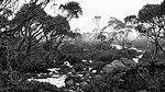 Kunanyi (Mount Wellington), Tasmania.jpg