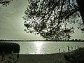 Lac de Sidi Mohamed Benali,Sidi Bel Abbès,algerie 2.jpg