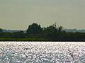 Lac de grand lieu Passay.jpg