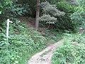 Ladybower Reservoir - Footpath to New Barn - geograph.org.uk - 860086.jpg