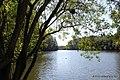 Lagoa no Jardim Botânico da Vale - panoramio.jpg