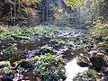 Landschaftsschutzgebiet Buchberger Leite.JPG