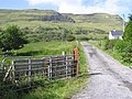 Lane, Shesknan - geograph.org.uk - 1482568.jpg