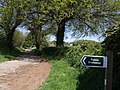 Lane at Higher Haye Farm - geograph.org.uk - 429068.jpg