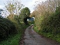 Lane passing Hayne House, looking towards Silverton - geograph.org.uk - 1582879.jpg