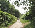 Lane to Lily Bottom, near Hampden - geograph.org.uk - 184521.jpg